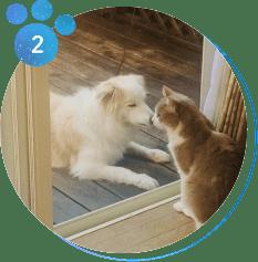 「ペット飼育可住宅」にお住まいの方