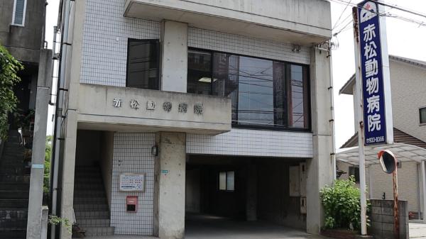 赤松動物病院